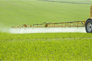 Government urged to curb pesticide use